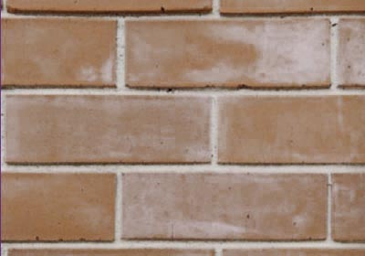 Abs Brick Cleaning Sydney Builders Guide